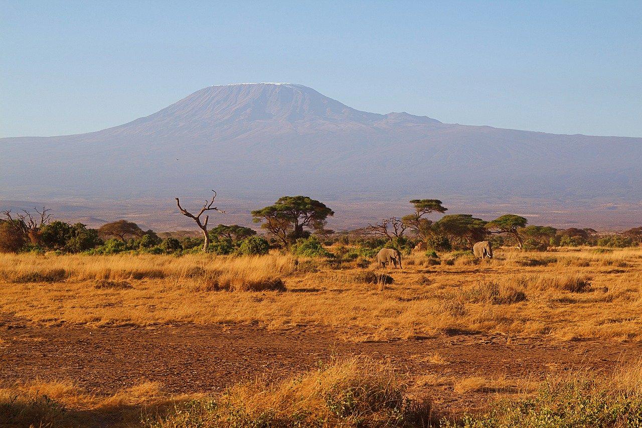 Kilimanjaro mýma očima